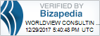 Worldview Consulting Accounting Verified by Bizapedia